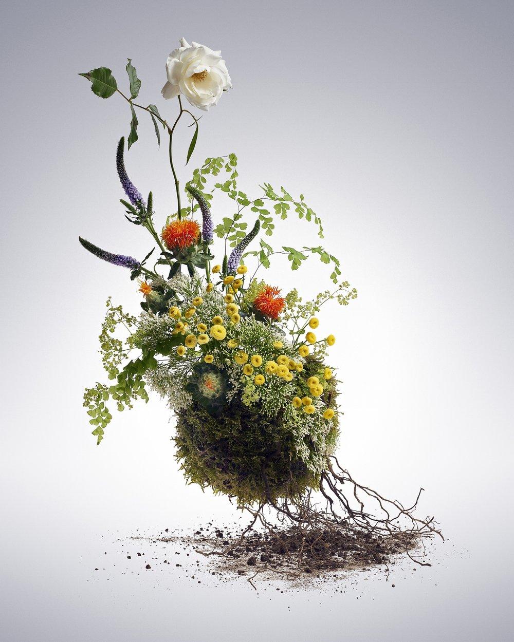 20150615_Flowers_Shot_1_Main_V4.jpg