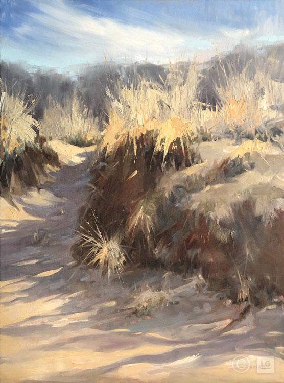 Dune Shadows II
