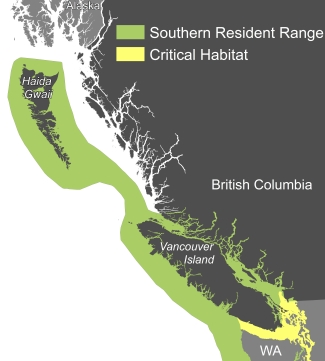 Southern Resident Killer Whale range and designated critical habitat within Canadian and adjacent waters in Washington State. (Published with permission from Coastal Ocean Research Institute)