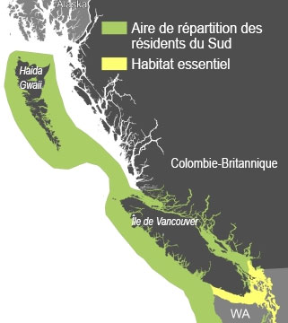 L'aire de répartition et l'habitat essentiel désigné de l'épaulard résident du Sud dans les eaux canadiennes et les eaux adjacentes à l'État de Washington.(Publié avec la permission de l'Institut de recherche océanographique côtière)