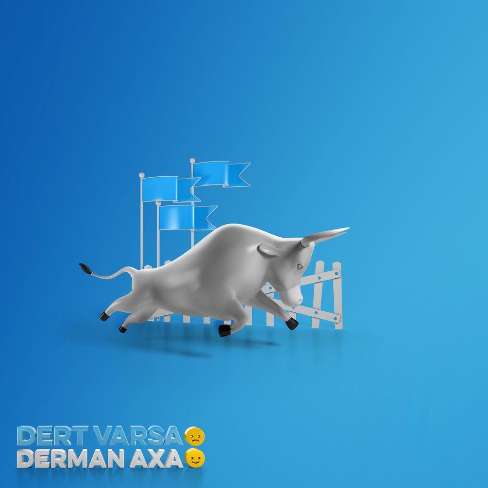 axa05.jpg