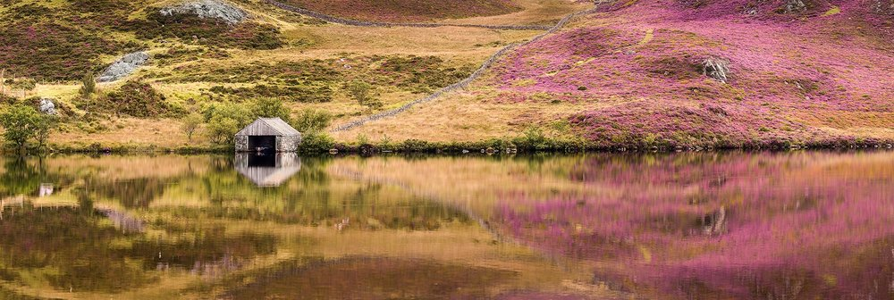 Paul Fowles Photography, Aberdovey Aberdyfi, Cregenon Lake - Heather.jpg