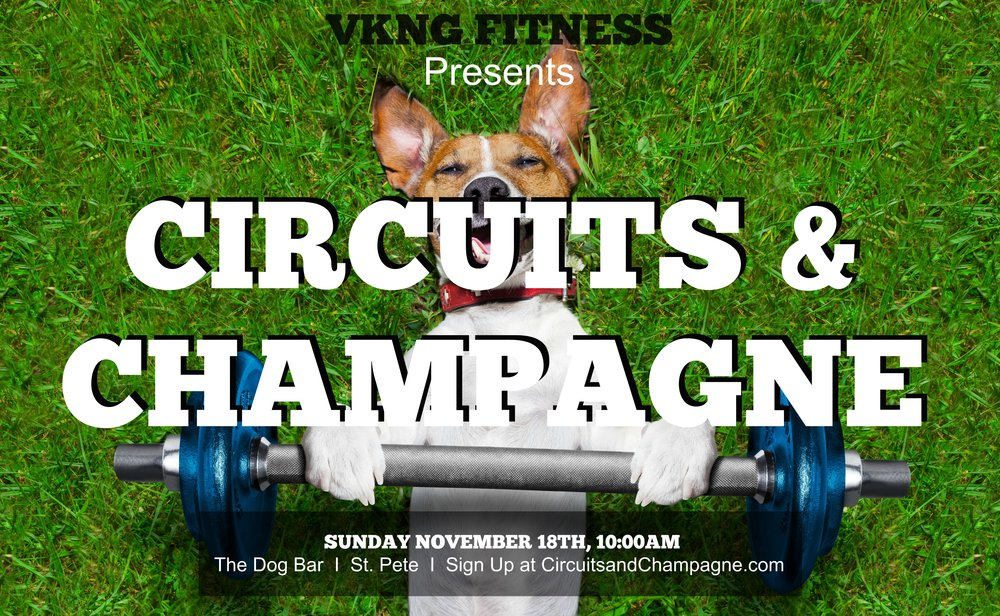 Dog Bar - St.Pete - Join the VKNG Crew at Dog Bar in St. Pete to sweat it out then chill out with the pups!Stick around after the workout for all the puppy kisses and maybe some more drinks.