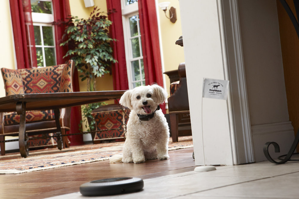 Hidden Indoor Pet Containment. Set Your Pet's Boundaries