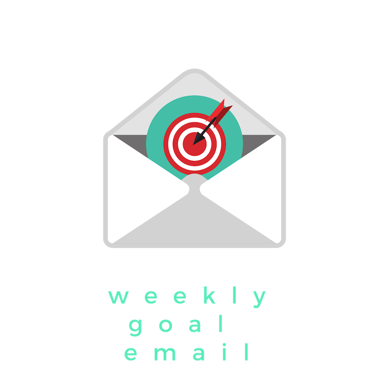 Weekly Action challenge email, sent to you to keep you motivated and accountable to complete towards your 3 month business goal.