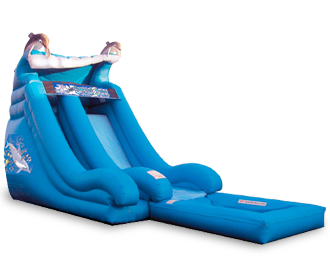 18_dolphin_wave_waterslide_001.png