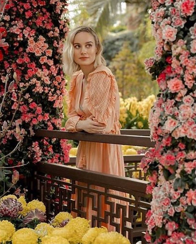 @brielarson touring around Singapore in @ullajohnson is just about as pretty as it gets 💛🌺@samanthamcmillen_stylist @analiesekern 👌🏼