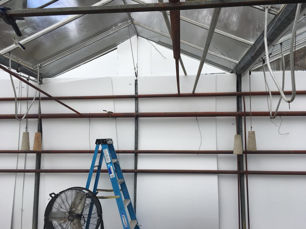 New foam panels installed to reflect harmful sun rays from reaching the plants in the greenhouse.