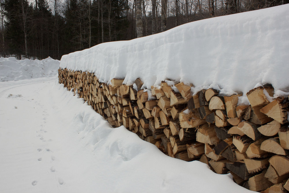 Wood pile 3.11.15.jpg