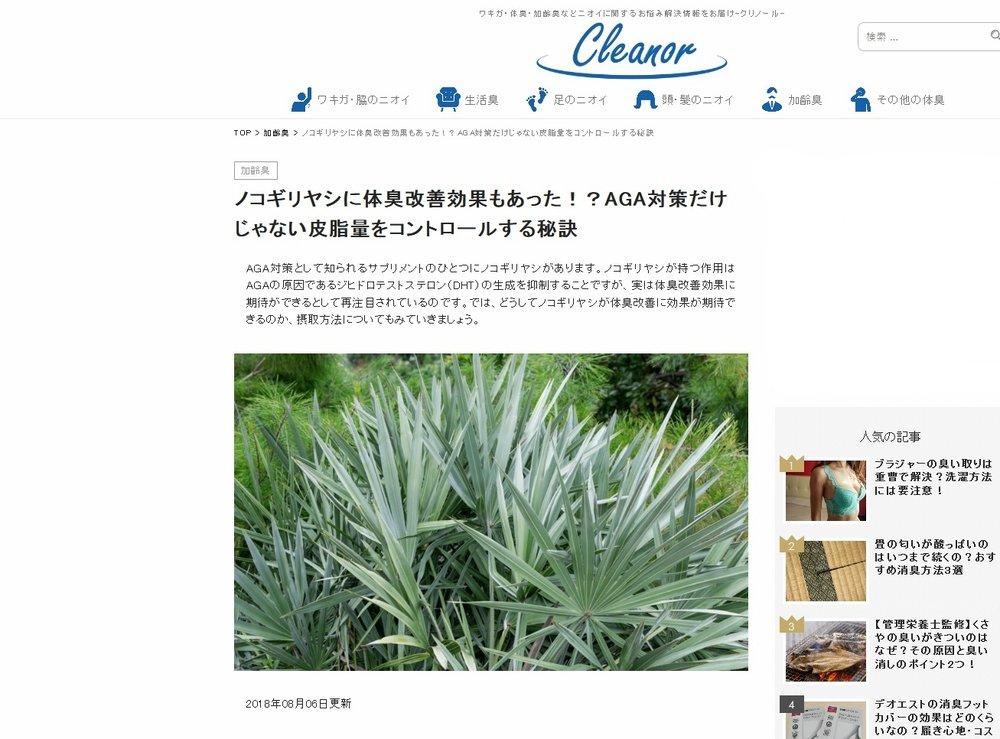 Silver saw palmetto (Cleanor - Shinjuku, Tokyo, Japan)