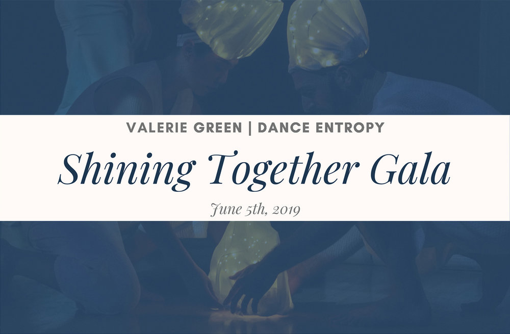 VGDE_Shining_Together_Gala_19_1.jpg