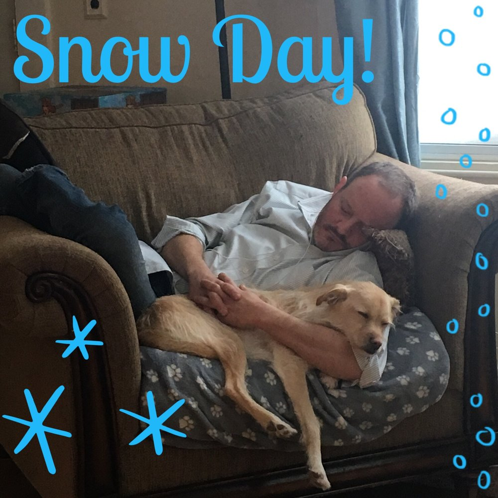 Daisy snow day.jpeg