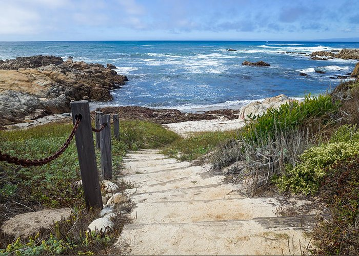 stairway-to-asilomar-state-beach-priya-ghose.jpg