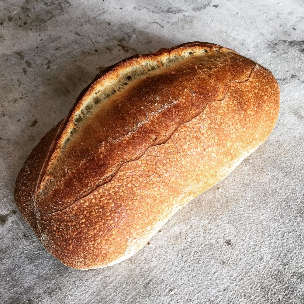 Table Loaf - This rustic free-form loaf is a traditional table bread with an open and airy crumb. Available in white and whole wheat.