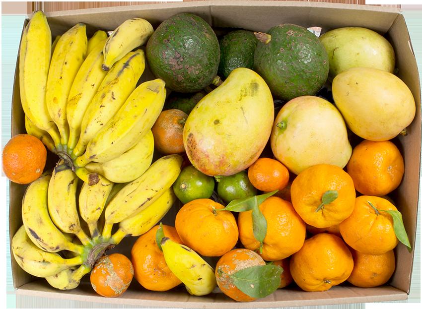 cesta-de-fruta-organica-por-assinatura.png