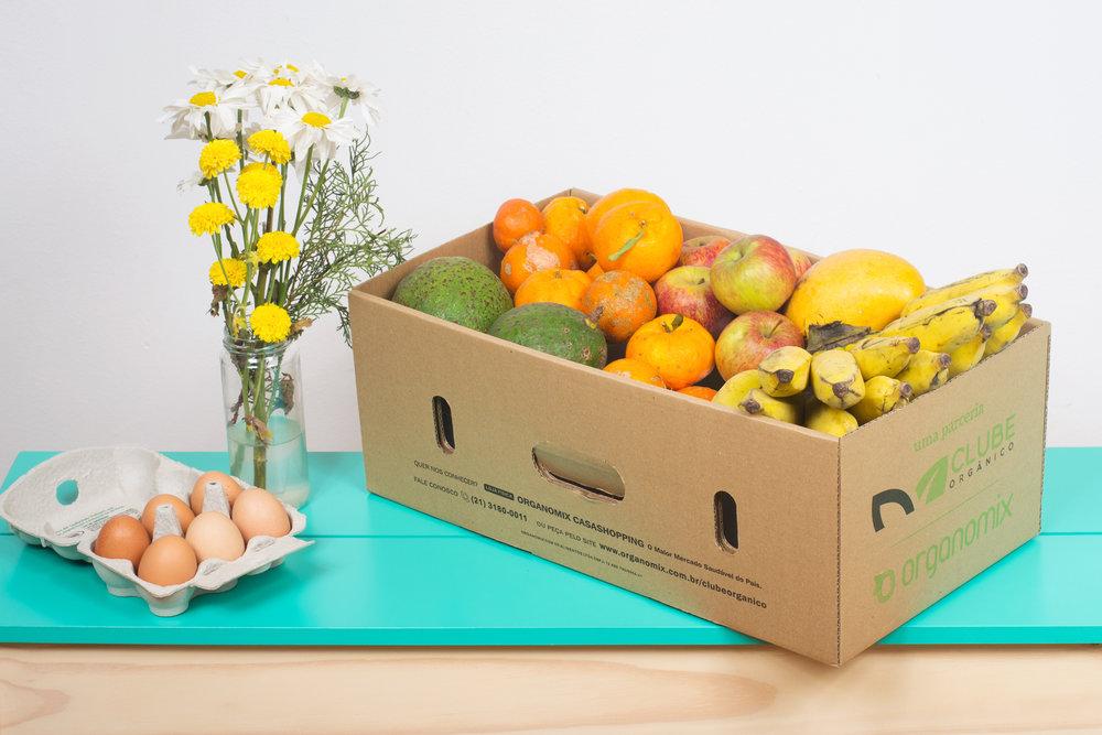 cesta-fruta-organica-da-estacao-por-assinatura.jpg