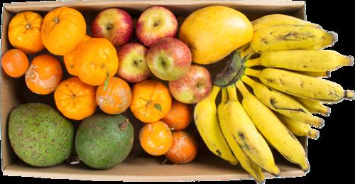 Escolha uma cesta… - E o plano ideal para a sua rotina!