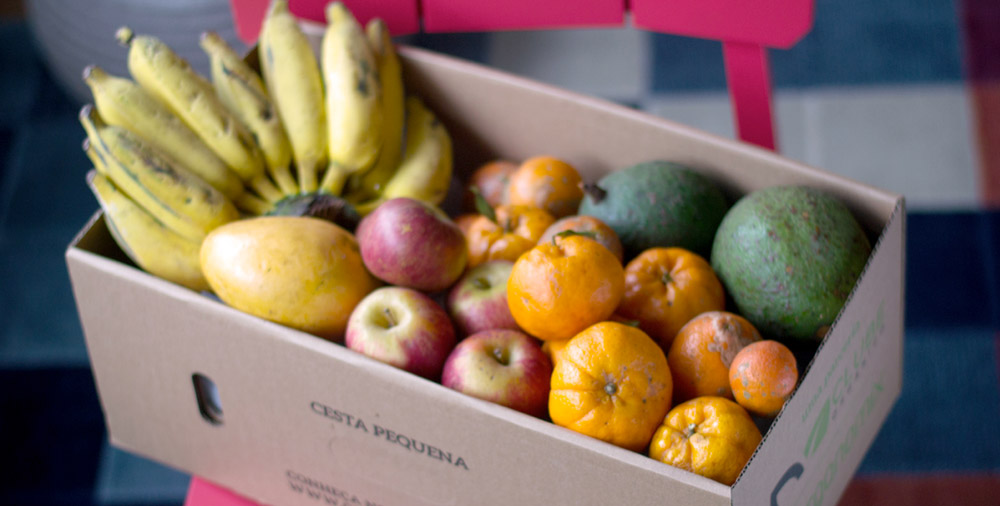 - Como armazenar frutas e vegetais?