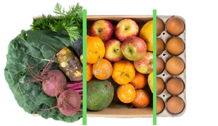 Vegetais + frutas + ovos - BENEFÍCIOS INCLUSOS> Sua cesta personalizada> + 1 cesta de frutas orgânicas> E também 1 dúzia de ovos orgânicos> Apenas + R$ 68,48 por entrega