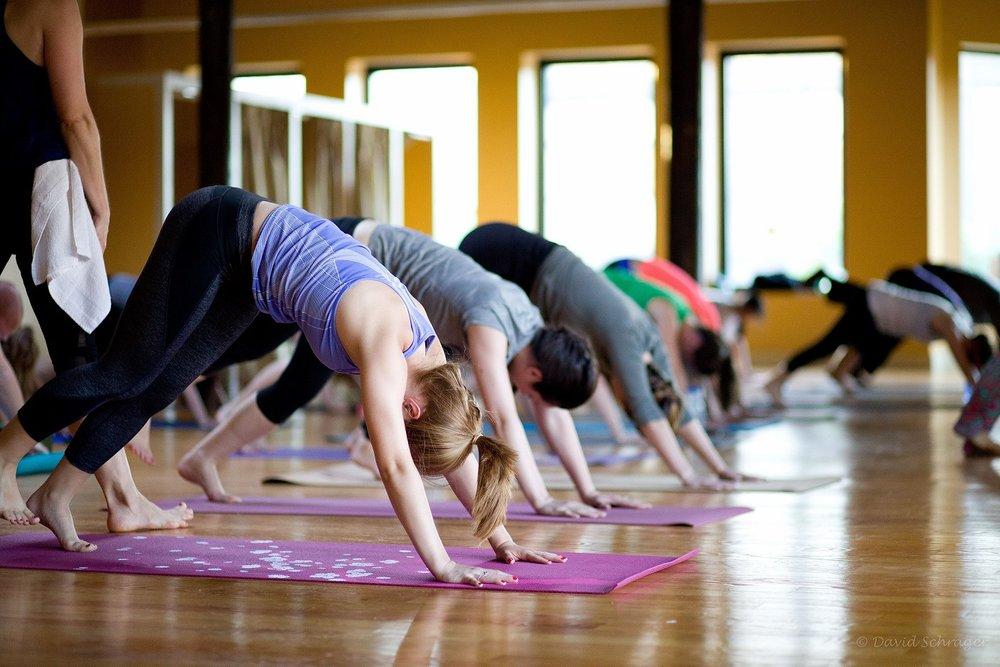 international yoga day boston 2015.JPG