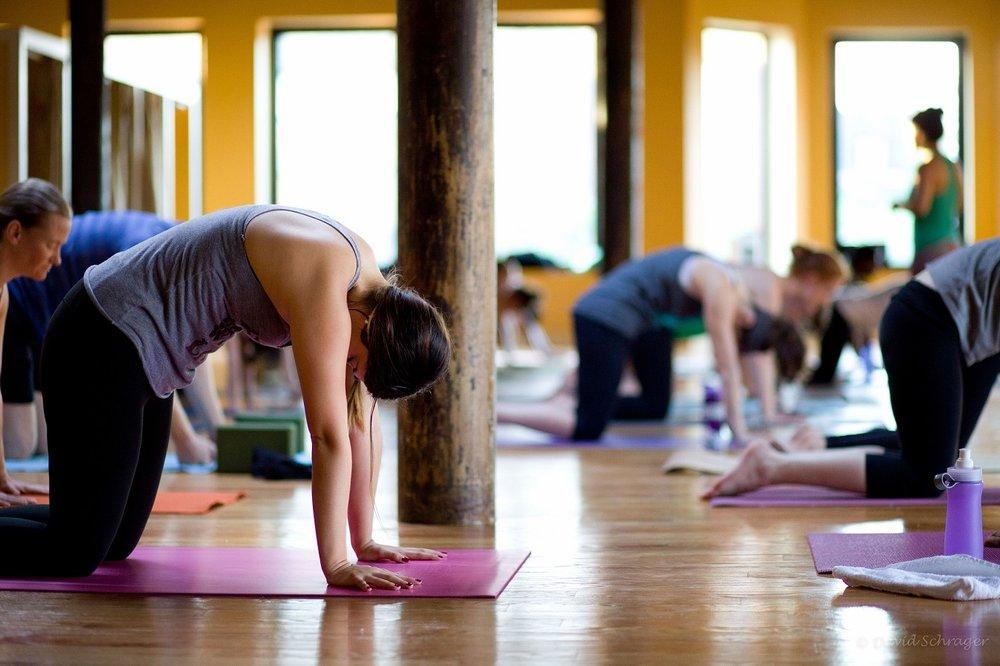 international yoga day 2015.JPG