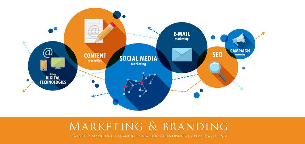 Marketing+and+Branding.jpg