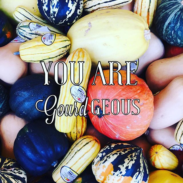 "Just a little reminder right here... happy hump day!! Now go ""squash"" it!! 😜😊🍁🍂"