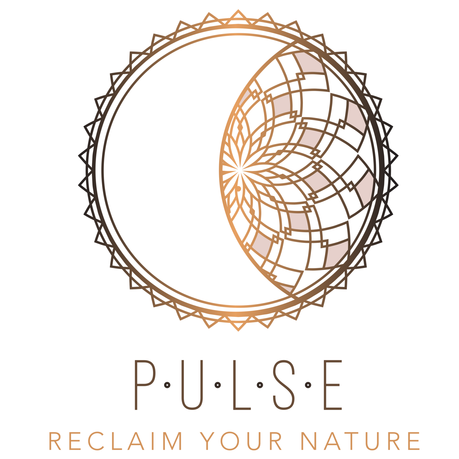 Finding Your Pulse | Reclaim Your Nature