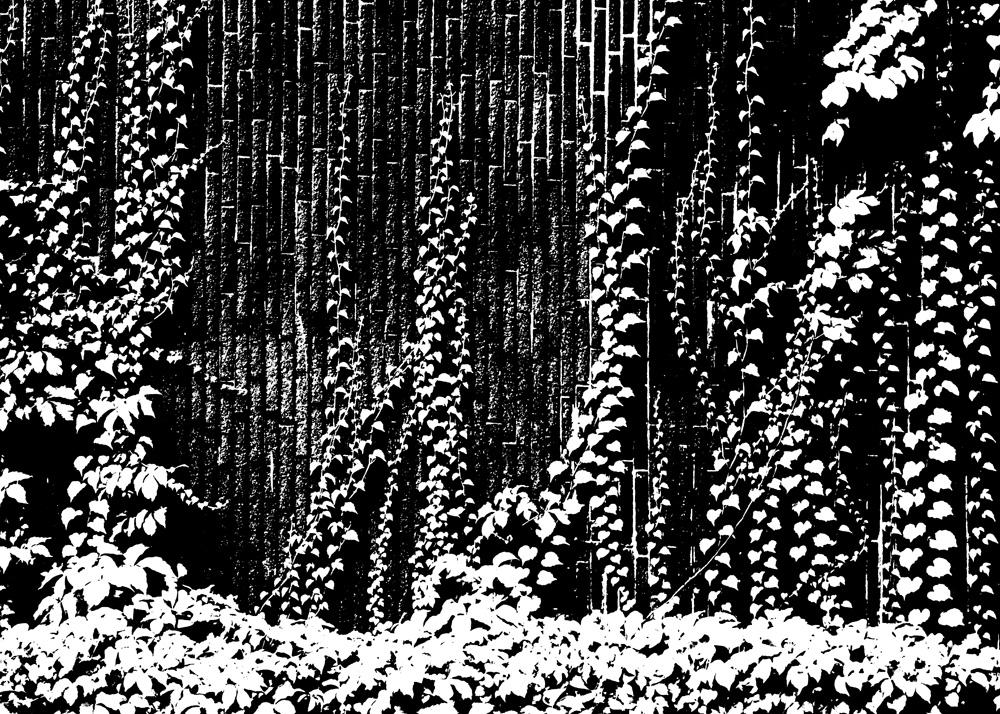 EVOQUE-IMAGES  487.jpg