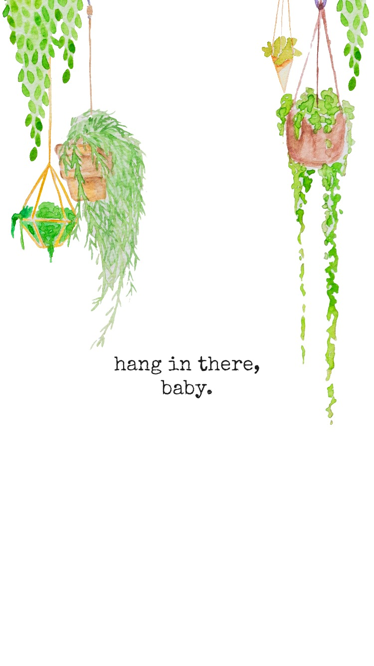 Hang_In_There_Baby.JPG
