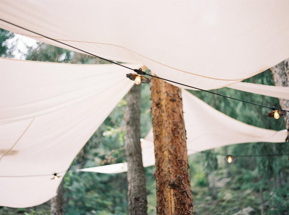 colorado-wedding-photographer-1-5.jpg
