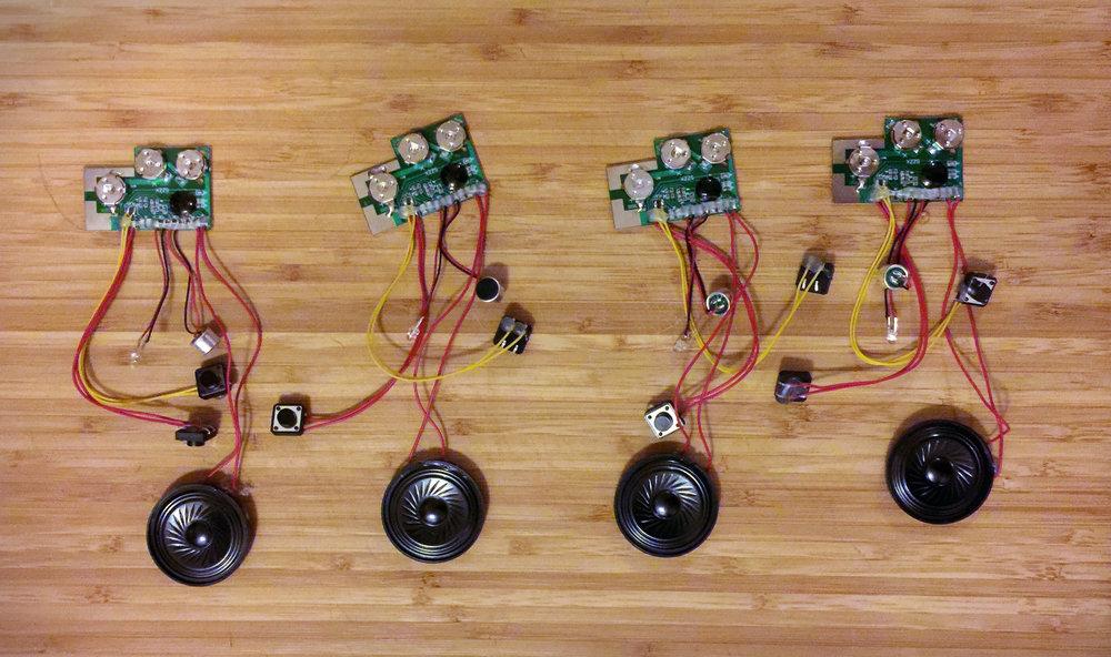 animal-circuit.jpg