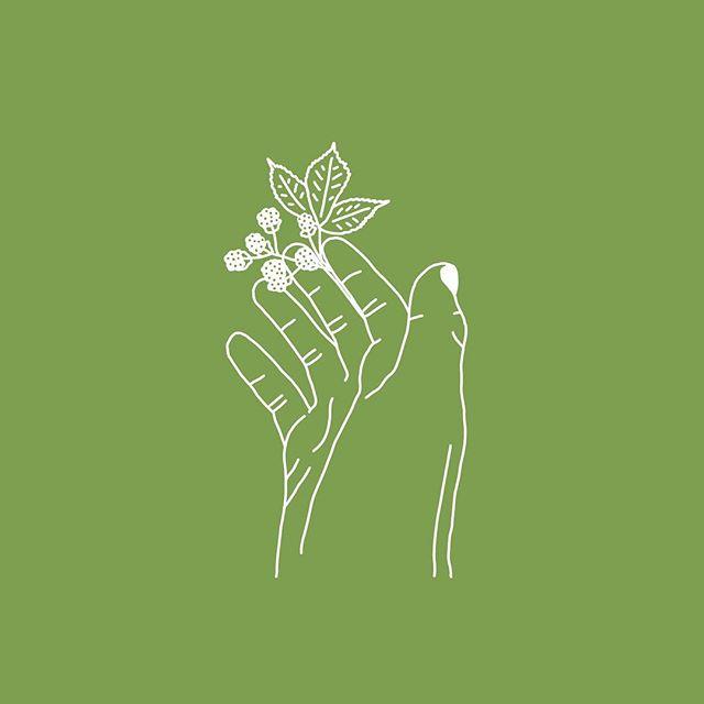 Botanical 2/3