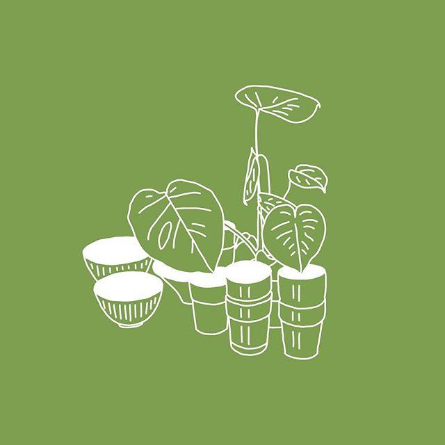 Botanical 3/3