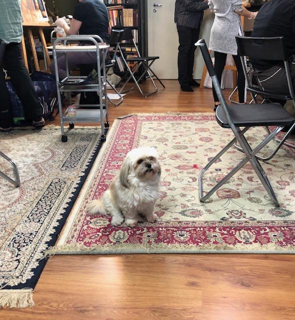Ateljeen apuope, Nyytti-koira.