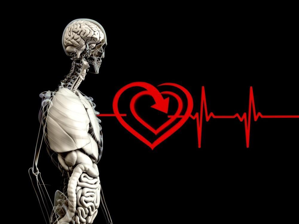 ¿Por qué se sitúa el corazón a la izquierda?