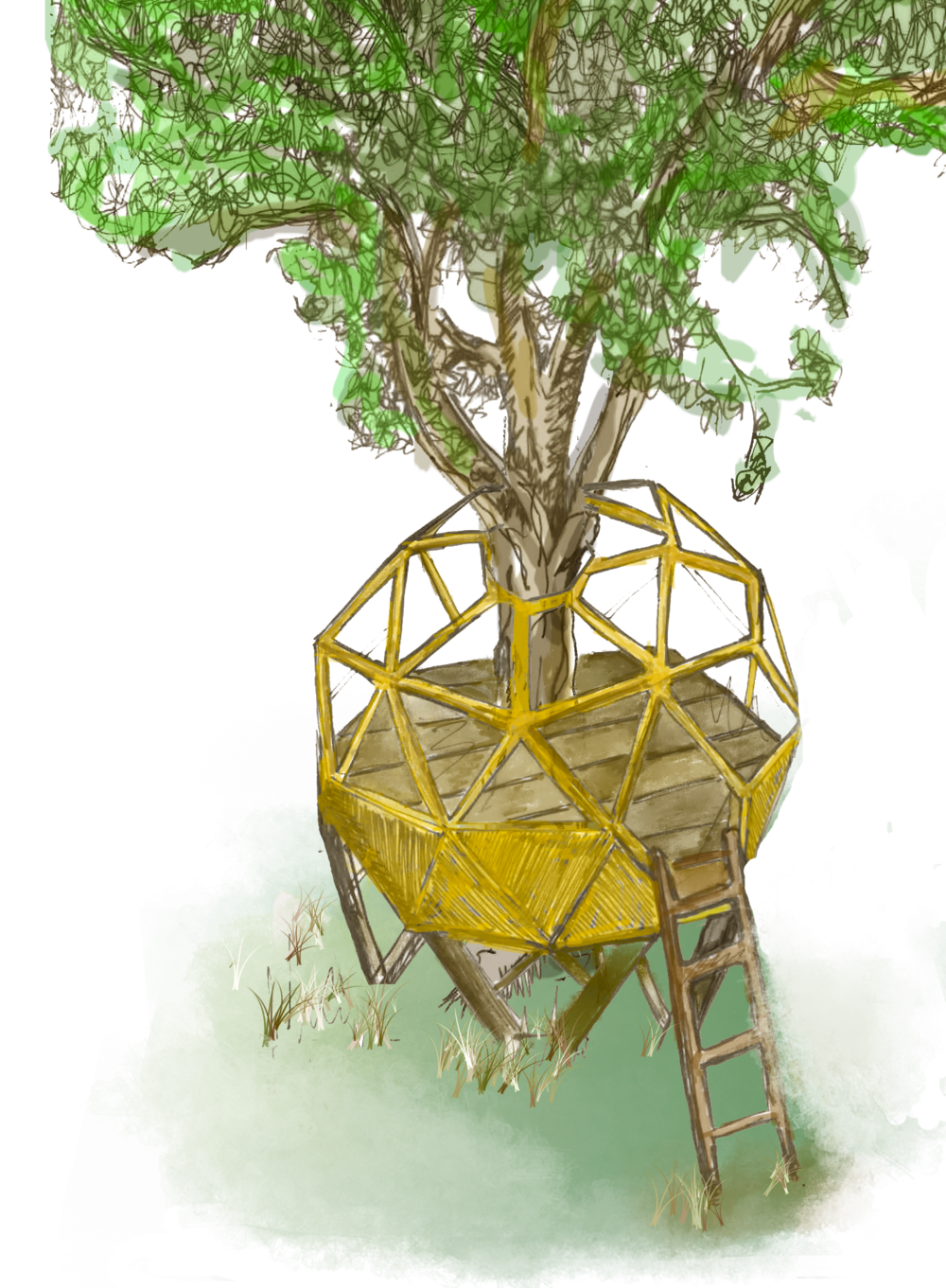 treehouse - We have created a beautiful dome that is nestled within the canopy of a large oak tree. The tree house can be hired for up to 10 people.