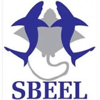 sbeel.png
