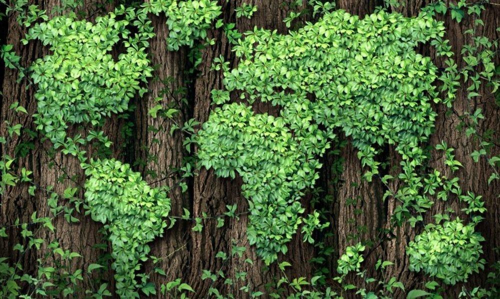 Greening-Earth-1020x610.jpg