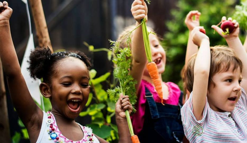 A Plant-Based Education - OUR NEWEST GRANTEE, KING CHARTER SCHOOLS BASED IN FLORIDA, IS APPLYING TO BE THE FIRST 100% PUBLIC AND 100% PLANT-BASED ELEMENTARY SCHOOL IN THE WORLD. THIS TUITION-FREE SCHOOL WILL ALSO BE A TRILINGUAL IMMERSION SCHOOL, TEACHING CLASSES IN SPANISH, MANDARIN AND ENGLISH. IN ADDITION, IT WILL SERVE AS A COMMUNITY RESOURCE FOR ADULTS INTERESTED IN ADDITIONAL EDUCATION IN HEALTHY NUTRITION THROUGH COOKING DEMOS, MOVIE SCREENINGS AND GUEST LECTURES. CHILDREN SPEND MOST OF THEIR WAKING HOURS IN SCHOOL AND THIS NEW LEARNING ENVIRONMENT WILL PROVIDE THEM NOT ONLY WITH AN EXCITING CURRICULUM, BUT ALSO PROPER NUTRITION AND INFORMATION ON HOW TO LIVE A MORE SUSTAINABLE LIFESTYLE. HEALTHY BODIES AND HEATHY MINDS EQUALS HEALTHY STUDENTS!