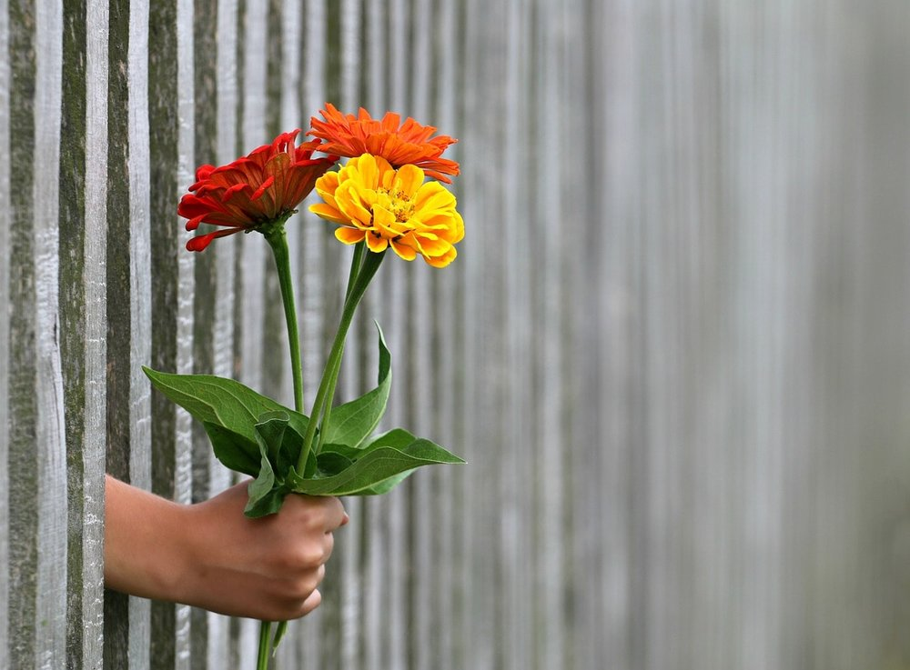 a hand holding out a bunch of flowers through a wooden fence - reviews for Anne Bryant Life Coach and ME CFS Fibromyalgia Practitioner - Lifespark Coaching