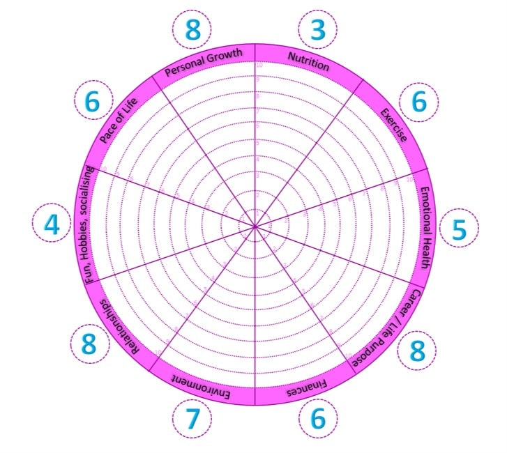A wheel of life which allows you to rate the different parts of your life - with example ratings