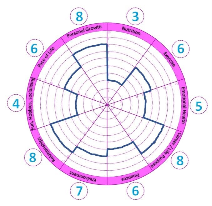 A wheel of life which allows you to rate the different parts of your life - with example ratings and joined up