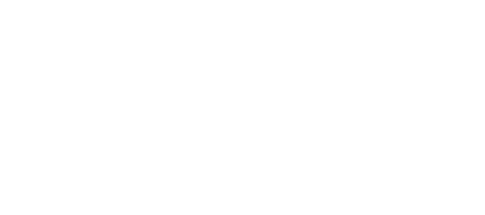 Dodi International School