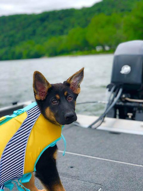 Mischa boat ride B .jpg