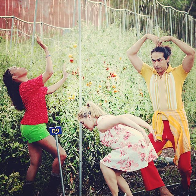 Don't forget to join @thepilotdanceproject for Green Zebras by @lryuill1 ! August 11 and 12! Only at @finca_tres_robles ! #yaydance #houdance #houarts #pilotdanceproject #fincatresrobles