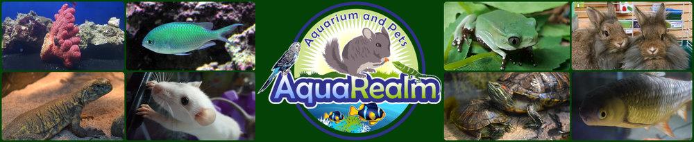 AquaBanner1.jpg