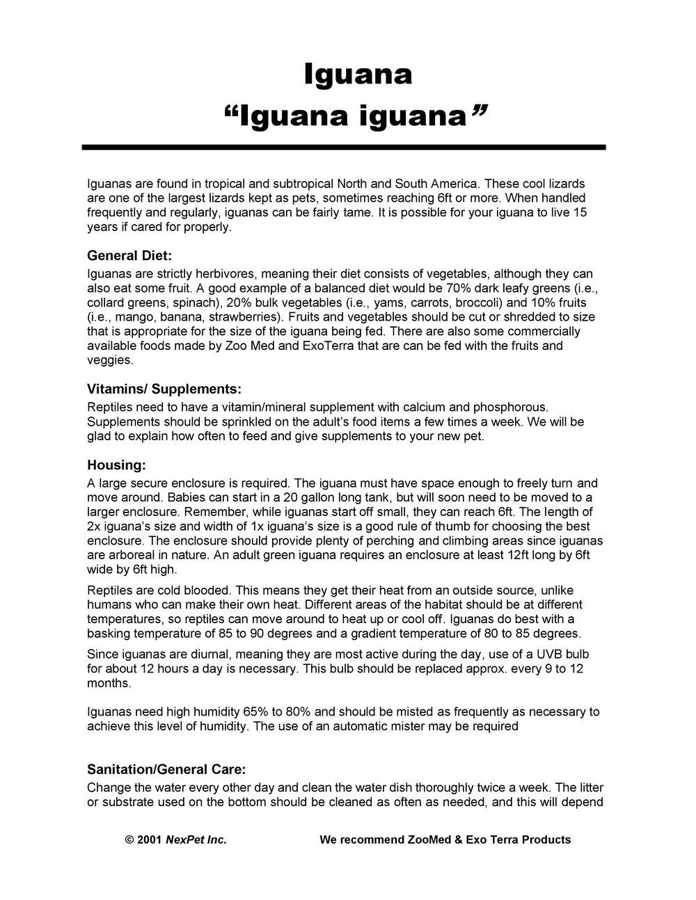 Iguana Care Sheet pg1