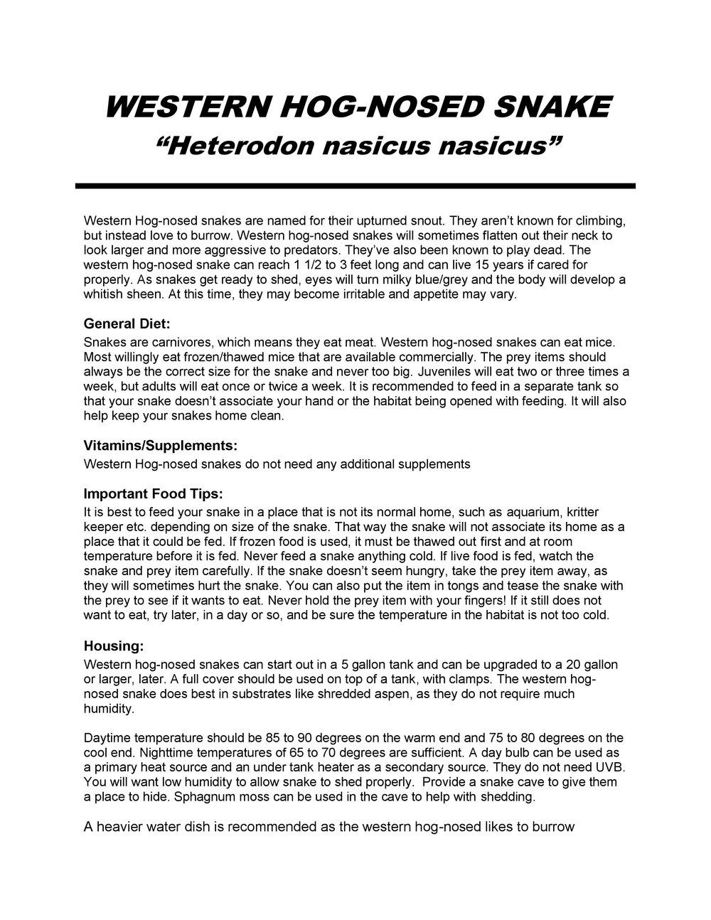 Western Hog Nosed Snake Care Sheet pg1