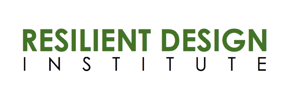 RDI logo web.png